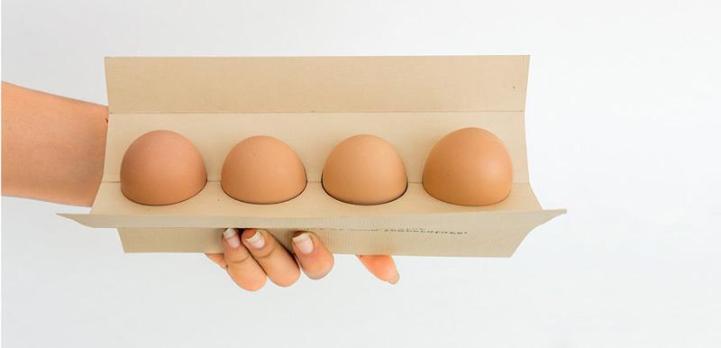 شانه تخم مرغ 3